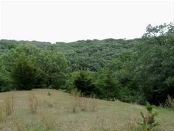 Fairview Wildlife Complex