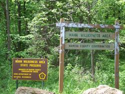 Mann Wilderness Area