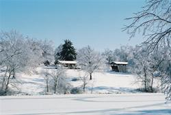 Covered Bridge - Winter