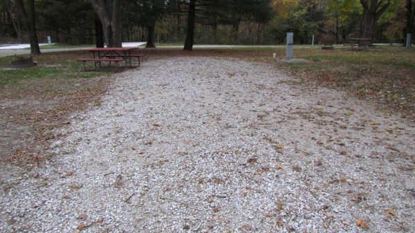 Pollmiller Campsite #28  Reservable -No Image