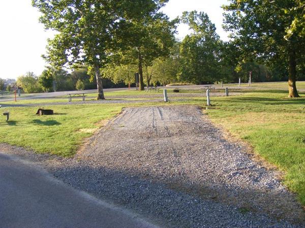 Marion County Park, Campsite #41 -No Image