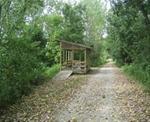 Observation Deck on Cedar View Trail