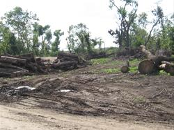 Damage done by the EF-5 tornado.