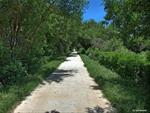 Paved section of the Wabash Trace Nature Trail