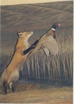 Red Fox and Pheasant[4]