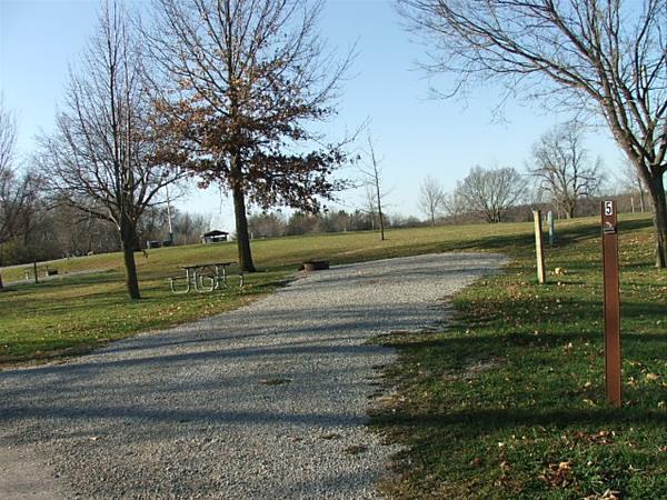 Roberts Creek East, Campsite  5 -No Image