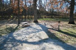 Campsite - Briggs Woods - 34 - electric -No Image