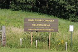 Nelson Reng