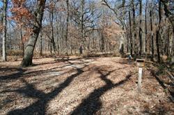 Campsite - Briggs Woods - 61 - electric -No Image