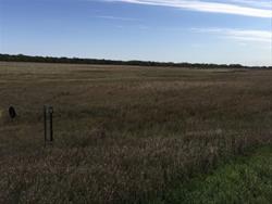 Mcguire Wildlife Area
