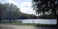 Cold Springs Park- Lake View