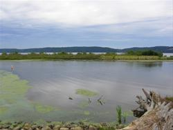 Mud Lake Park Dubuque Ia