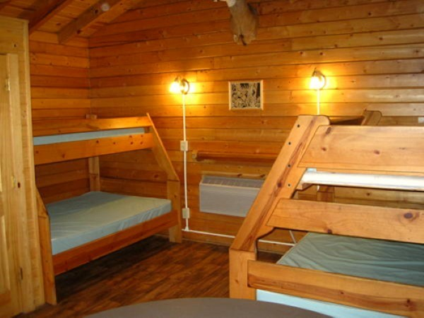 Whitetail Cabin Beds