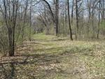 A.F. Miller State Preserve Trail