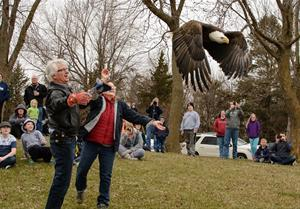 S.O.A.R Eagle release at our Earth Day Carnival 2018