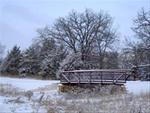 Bridge on paved hiking/biking trail at Discovery Park