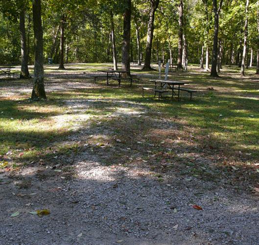 Morris Campground site 11 -No Image