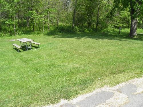 New Wine Park: Campsite 06 -No Image
