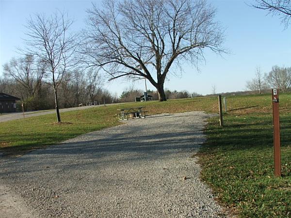Roberts Creek East, Campsite  4 -No Image