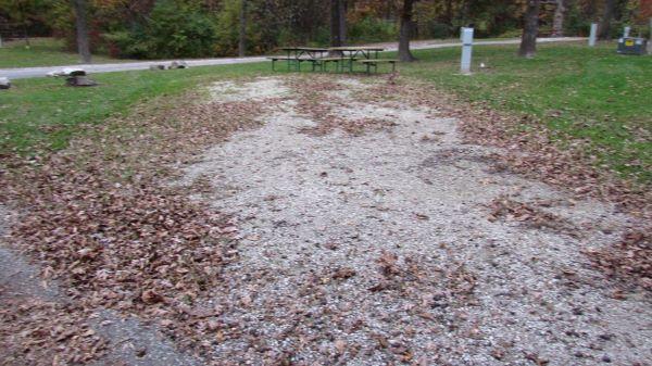 Pollmiller Campsite #12  Reservable -No Image