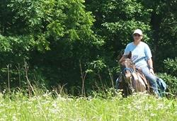 Horseback Rider at Turkey Run Wildlife Area.