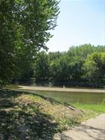 Millsite View