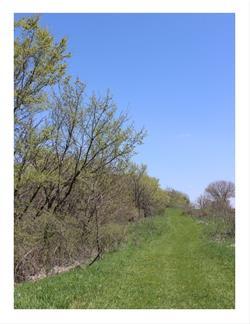 Schaben Park Trail