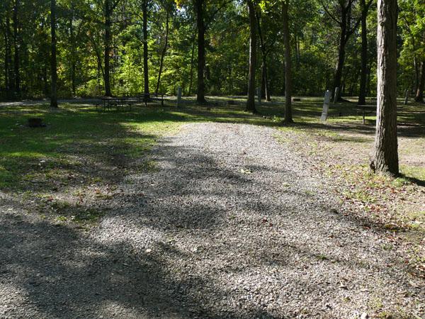 Morris Campground site 12 -No Image