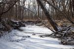 Kirkville Stream