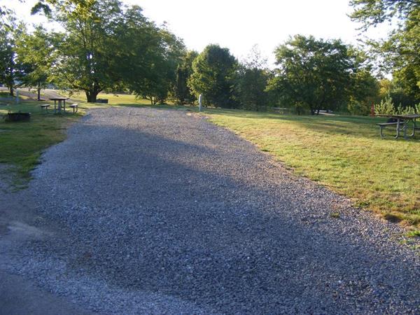 Marion County Park, Campsite 49 -No Image