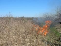 Bobwhite State Park Prairie Burn