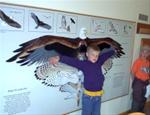 Interactive exhibits in the nature center