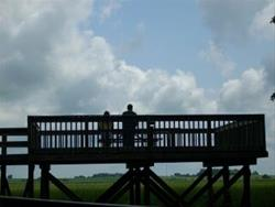 Observation Platform
