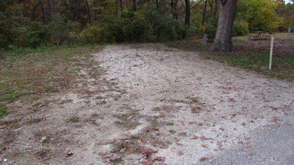 Pollmiller Campsite #15 Reservable -No Image