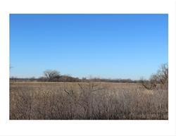 Horseshoe Lake Wetland Area