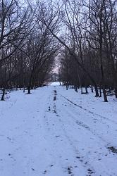Winter Frolic 2019