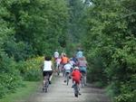 Bikes on Wapsi Trail