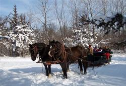 Sleigh and carriage rides from the Equestrian Center - Jester Park, Polk County, IA