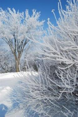 Winter at Otter Creek Lake and Park