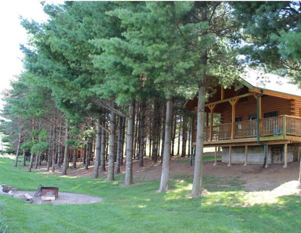 Deluxe Cabin Scotch Pine -No Image