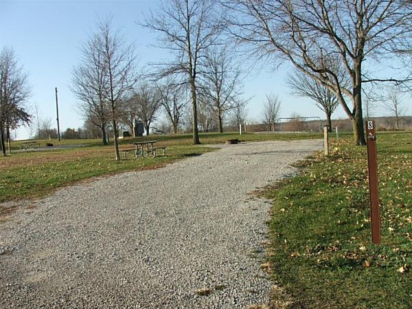 Roberts Creek East, Campsite  8 -No Image