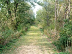 Recreation trail north of Spragueville along an old Chicago-Milwaukee Railroad line