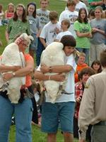 Trumpeter swan reintroduction program - Trumpeter Swan Release