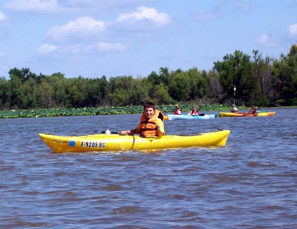 Kayak Rentals -No Image