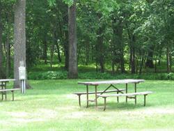 Campsite 15R -No Image
