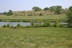 Savery Pond