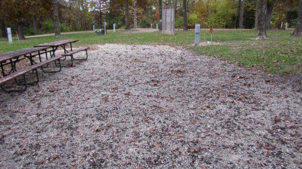 Pollmiller Campsite #14 Reservable -No Image