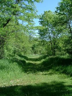Buffalo Creek Park