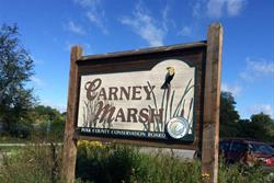 Carney Marsh Sign