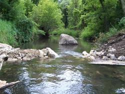 Trout Stream Boerjan Wildlife Area